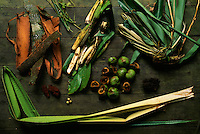 Close-up of food typically consumed by orangutans during low fruit season including leaves, figs, ginger stems, and the inner layer of bark.