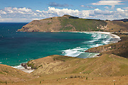 Allan's Beach, Otago Peninsula, New Zealand