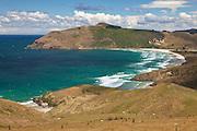 Allan's Beach, Otago Peninsula, New Zealand