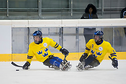 GER v SWE during the 2013 World Para Ice Hockey Qualifiers for Sochi, Torino, Italy