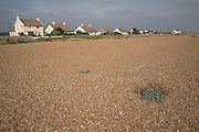 Beach and cottages at the quiet seaside settlement of Shingle Street, Suffolk, England