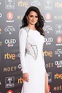 Penelope Cruz attends Goya Cinema Awards 2018 at Madrid Marriott Auditorium on February 3, 2018 in Madrid, Spain