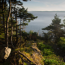 Blockhouse Point, Witherle Woods, Castine, Maine, US