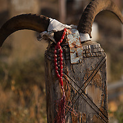 A string of beads hangs off the horns adorning an animist-muslim tombstone in a cemetery in Nokhur village, Turkmenistan