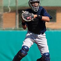 Baseball - MLB Academy - Tirrenia (Italy) - 19/08/2009 - Andy Paz (France)