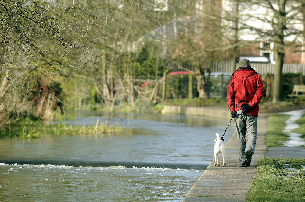 © under license to London News Pictures. .2010,12,12,   Today  (Sunday) .Kent thaws out after the big freeze.  Life gets back to normal after the severe weather of the last two weeks. .Morning walk along  the river Darent in Eynsford..Picture credit should read Grant Falvey/London News Pictures...