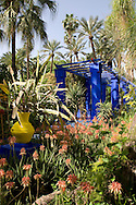 A cobalt blue pergola surrounded by cactuses and palm trees in the Majorelle Garden, Marrakech, Morocco