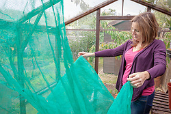 Taking down netting shading material from a greenhouse in preparation for winter