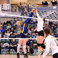 2nd year setter Satomi Togawa (5) of the Regina Cougars in action during the Women's Volleyball Home Game on November 17 at University of Regina. Credit Matt Johnson/©Arthur Images 2017