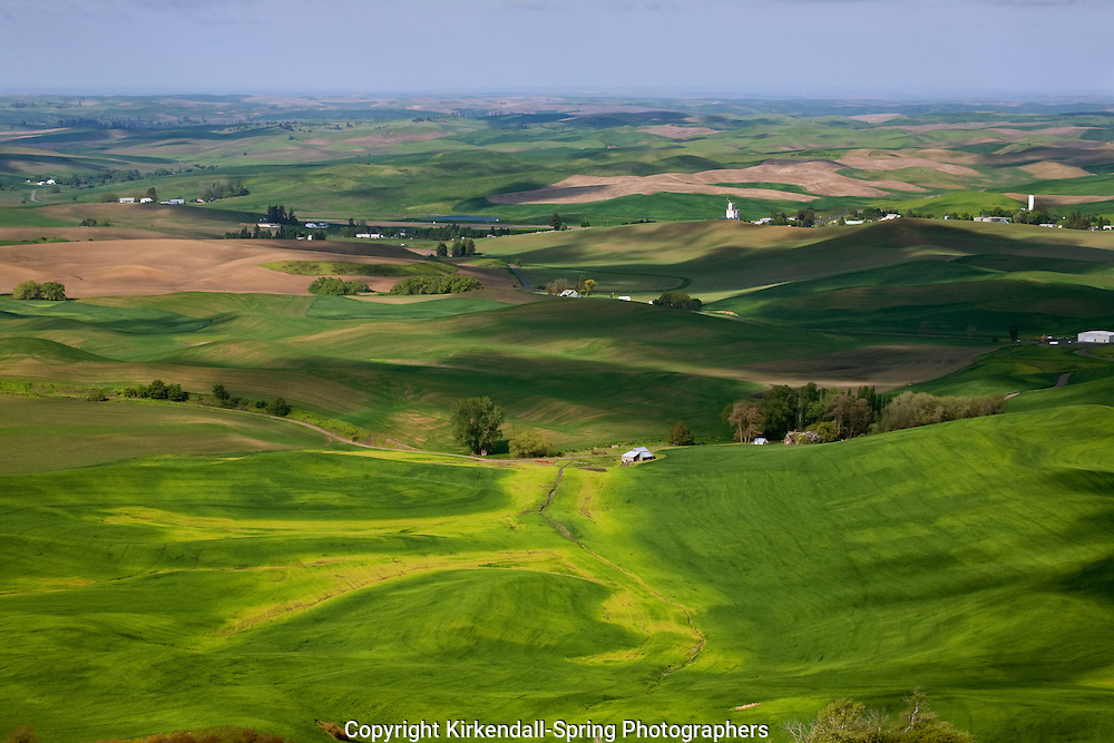 WA05490-00...WASHINGTON - View over the farm covered rolling hills of the Palouse from Steptoe Butte State Park.
