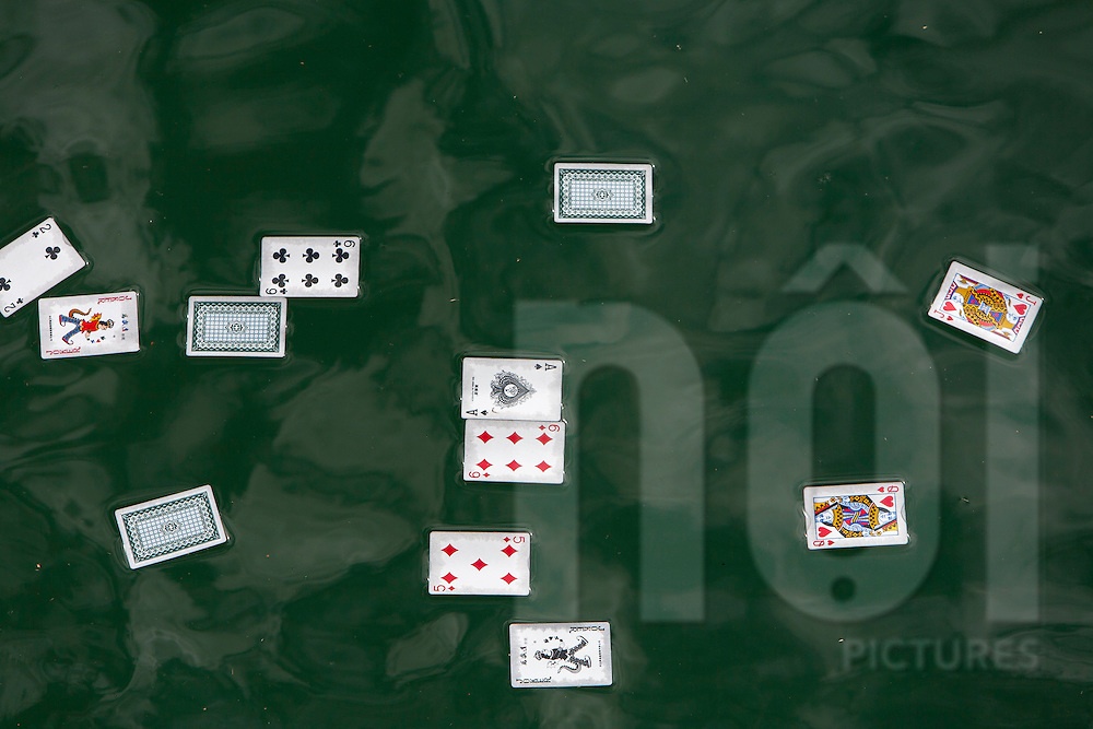 Scattered playing cards floating on the surface of water, Danang, Vietnam, Southeast Asia