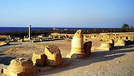 Libia  Sabratha .Città  romana a circa 67km da Tripoli.Il foro romano.<br /> Sabratha Libya.Roman city about 67km from Tripoli.<br /> The roman forum