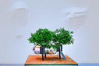 Loris Cecchini, MOMA St Etienne - France