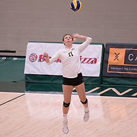 3rd year Right-Side hitter Haley Wagar in action during Women's Volleyball home game on November 3 at Centre for Kinesiology, Health and Sport. Credit: Casey Marshall/Arthur Images