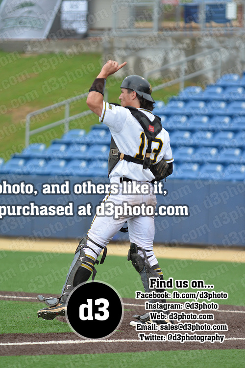 Baseball: NCAA Division III South Regional. Randolph-Macon College vs. Christopher Newport University