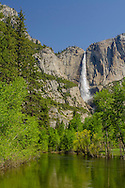 Upper Yosemite Falls from Swinging Bridge, Yosemite Valley, Yosemite National Park, California
