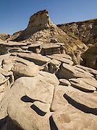 """The Bisti/De-Na-Zin Wilderness, a rolling landscape of badlands, offers some of the most unusual scenery found in the Four Corners Region of the American Southwest.<br /> Located in New Mexico, the Wilderness is a desolate area of steeply eroded badlands with fragments of petrified tree trunks scattered thoughout the sand and sage desert.<br /> Translated from the Navajo word Bistahí, Bisti means """"among the adobe formations."""" De-Na-Zin takes its name from the Navajo words for """"cranes."""""""