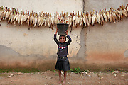 Young girl collecting corn in Aileu. @ Martine Perret.26 March 2008