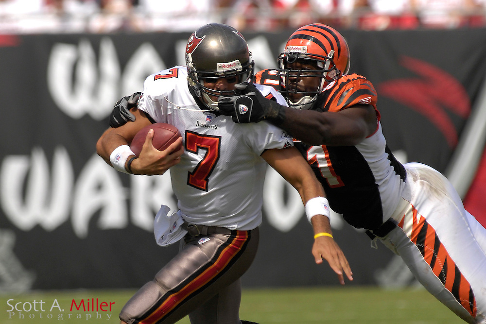 Oct. 15, 2006; Tampa, FL, USA;  Tampa Bay Buccaneers quarterback (7) Bruce Gradkowski is face maksked by Cincinnati Bengals defender (91) Roberth Geathers during the first half at Raymond James Stadium. ...©2006 Scott A. Miller