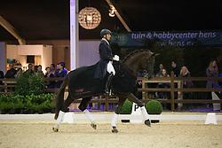 Devroe Jeroen, (BEL), Aaron<br /> Int I Freestyle Test<br /> CDI 4* Azelhof Lier 2015<br /> © Hippo Foto - Leanjo de Koster