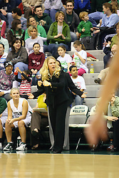 10 January 2009: Coach Mia Smith. The Lady Titans of Illinois Wesleyan University downed the and Lady Thunder of Wheaton College by a score of 101 - 57 in the Shirk Center on the Illinois Wesleyan Campus in Bloomington Illinois.