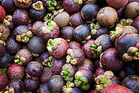 Purple Mangosteen fruit (Garcinia mangostana)