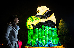© Licensed to London News Pictures. 18/01/2017. London, UK. A woman looks at a panda lantern on display at he Chiswick House Magic Lantern Festival. The Festival is a fusion of art, heritage and culture. Illuminating outdoor installations of beautifully sculpted lanterns taking various forms. Opening tomorrow and running until February 26th 2017 the theme for this year's festival is: 'Explore The Silk Road'. Visitors will discover life-sized and oversized lantern scenes, which represent and highlight this significant route of trade and culture from Europe to Ancient China.Photo credit: Peter Macdiarmid/LNP