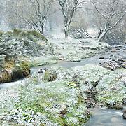 Snow in Spring, Valley the Chaudefour