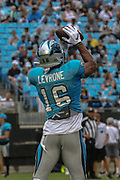 Carolina Panthers wide receiver Andre Levronen (16) catches a pass during Fan Fest at Bank of America Stadium, Friday, Aug. 2, 2019, in Charlotte, NC. (Brian Villanueva/Image of Sport)
