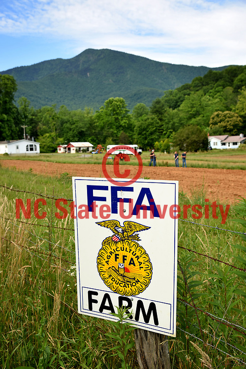Yancey County FFA members plant seeds on a farm outside Micaville.