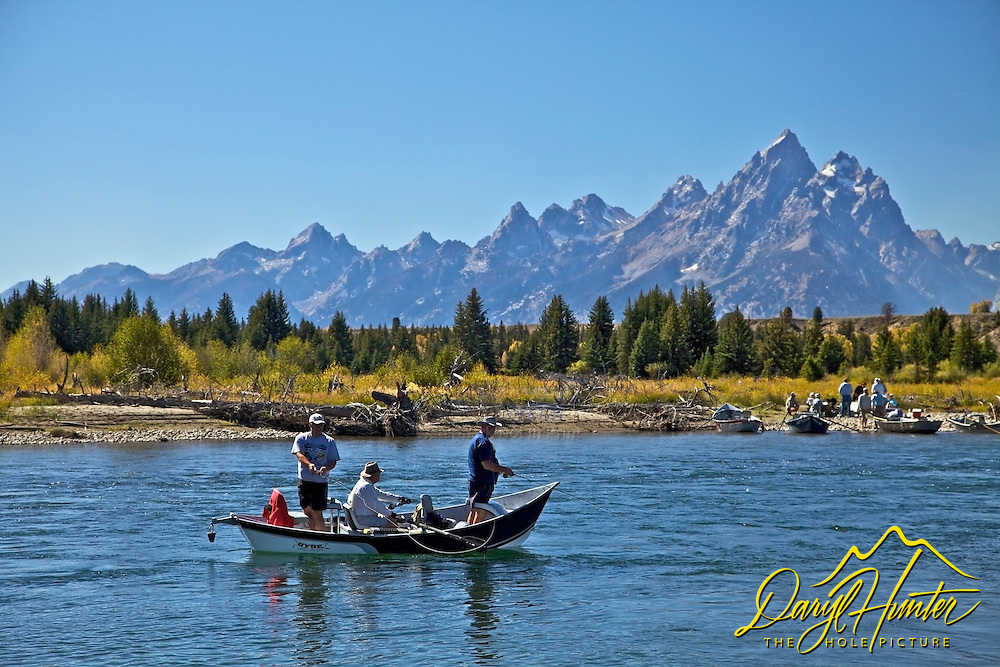 Fly-fisherman, Snake River, Grand Teton National Park, Jackson Hole, wyoming