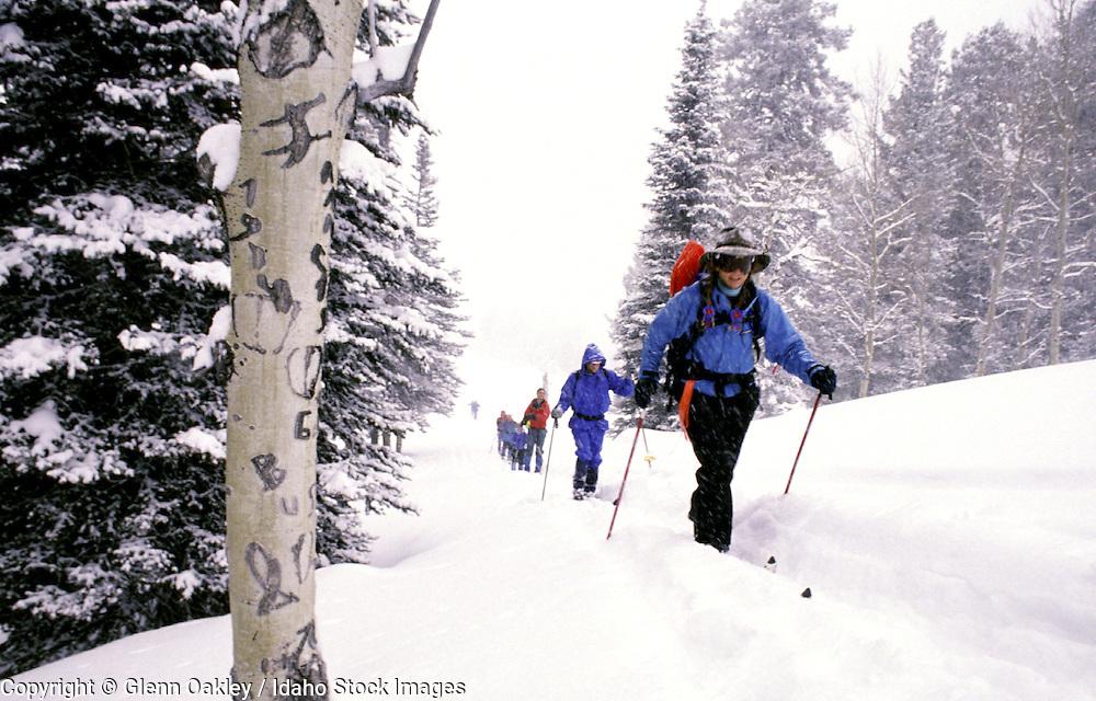Cross country skiing in storm, Smokey Mtns, Idaho.