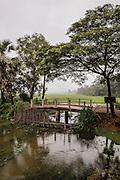"""Lanscape on the way to Preah Da, """"Num Banh Chok village"""", Siem Reap"""