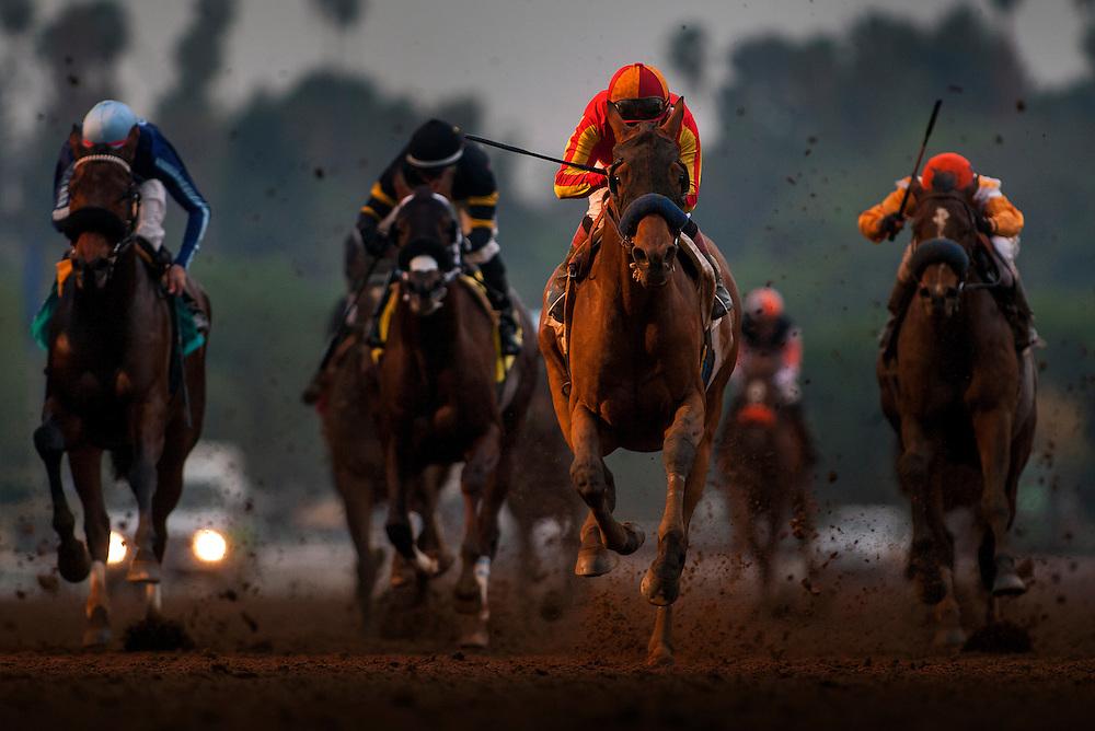 January 10 2014: Hoppertunity with Martin Garcia up wins the San Pasqual Stakes at Santa Anita Park in Arcadia CA. Alex Evers/ESW/CSM