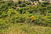 Lone cyclist mountain biking ion the Carmel Mountain, Israel