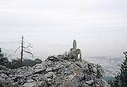 View of cactus overlooking Monterrey, Mexico.