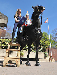 © Licensed to London News Pictures. 02/05/2013. London, UK Standing at 18hands high Cavalry Black 'Colossus' ridden by 27 year old Lance Corporal Raats of the Life Guards is inspected by groom Grace Shayler. The Household Cavalry receive a horse health check at Hyde Park Barracks from pet charity Blue Cross in order to encourage horse owners to take part in the National Equine Health Survey (NEHS). Photo credit : Stephen Simpson/LNP