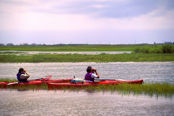 Stock photo of two men sitting on the water and bird watching from their kayaks