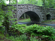 A fine example of the interesting architectural design of the famous stone bridges of Mount Desert Island. Many were commisioned as part of John D. Rockefellers network of carriage roads to limit vehicular traffic on the island. In this case, the bridge allows a carriage road to pass over a tarmacced park road.