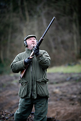 UK ENGLAND GRANTHAM 15DEC11 - Pheasant shooting on the Belvoir Castle Estate in Leicestershire, England...The shooting of game birds for sport involves the killing of millions of birds every year - over 35 million pheasants and 6.5 million partridges are produced to be used a live targets in the UK each year.....jre/Photo by Jiri Rezac....© Jiri Rezac 2011