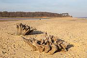 Benacre national nature reserve, North Sea coast, Suffolk, England, UK beach bay bar and lagoon