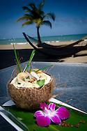 Plato Caldo Santo confeccionado por el Chef Nelson Rosado del Hotel Marriot Courtyard en Isla Verde.