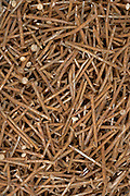 close up of a stack of old rusty nails