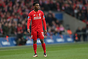 Liverpool forward Daniel Sturridge (15)  during the Capital One Cup match between Liverpool and Manchester City at Anfield, Liverpool, England on 28 February 2016. Photo by Simon Davies.