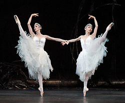 Swan Lake - The Royal Ballet, at the Royal Opera House, London, Great Britain, October 5,  2012. Photo by Elliott Franks / i - Images.