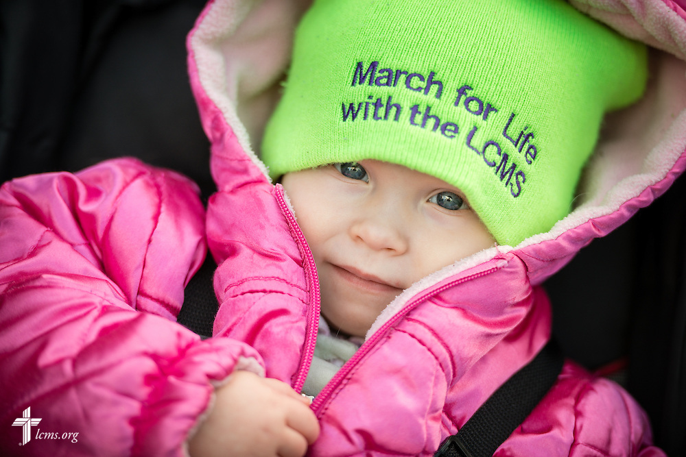 20-month-old Catherine Westgate rides along the route of the 2015 March for Life on Thursday, Jan. 22, 2015, in Washington, D.C. LCMS Communications/Erik M. Lunsford
