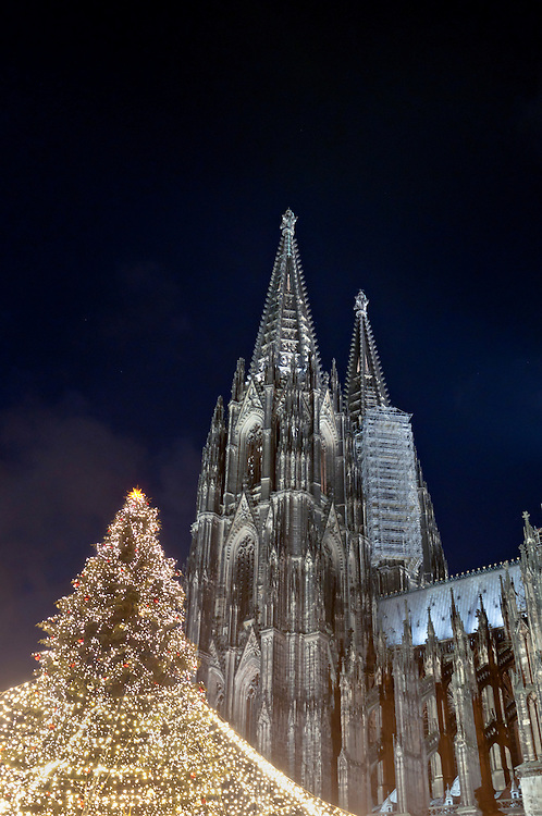 DEU,Deutschland,Nordrhein-Westfalen,Köln,  Weihnachtsbaum  vor dem Kölner Dom   | DEU, Germany, North Rhine-Westphalia, Koeln,Cologne  Christmas tree in front of the Cologne Cathedral