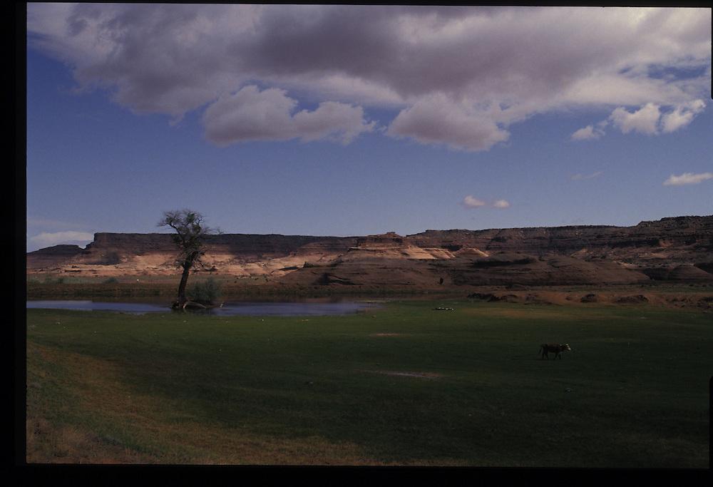 Near Oljeto, Utah.  1993