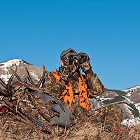 Mule deer hunter backpacking big trophy antlers