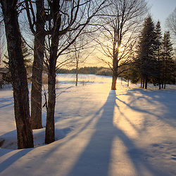 Trees, snow, and shadows at Medawisla Wilderness Camps near Greenville, Maine. Winter.